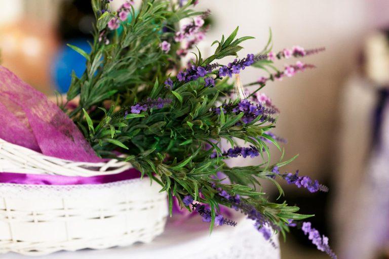 Zadbaj o zapach swojego domu